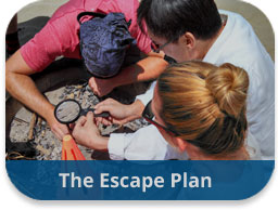 The Escape Plan Team Building