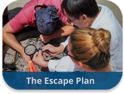 The Escape Plan Team Building